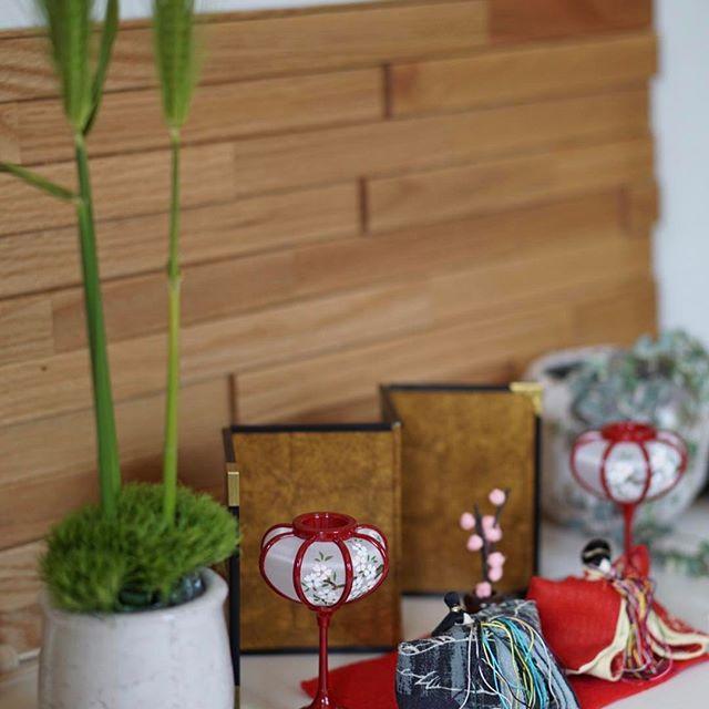 玄関インテリア 観葉植物4