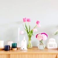 玄関に飾る花は何がおすすめ?運気アップ効果のある種類と置き方をご紹介!