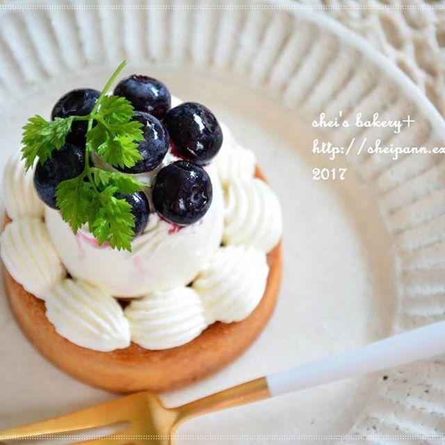 ブルーベリー 簡単人気 レシピ タルト・スコーン2