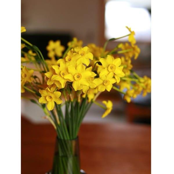 南西向きの玄関には黄色いお花を添えてみる