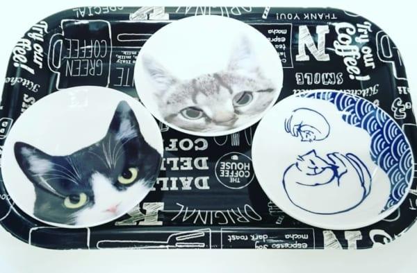 【セリア】猫好きにたまらない猫柄豆皿