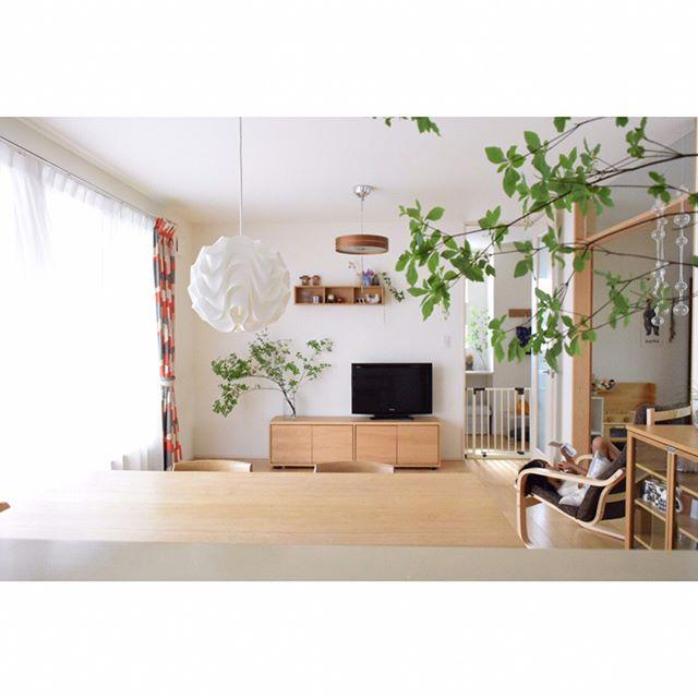 無印良品キャビネットと観葉植物