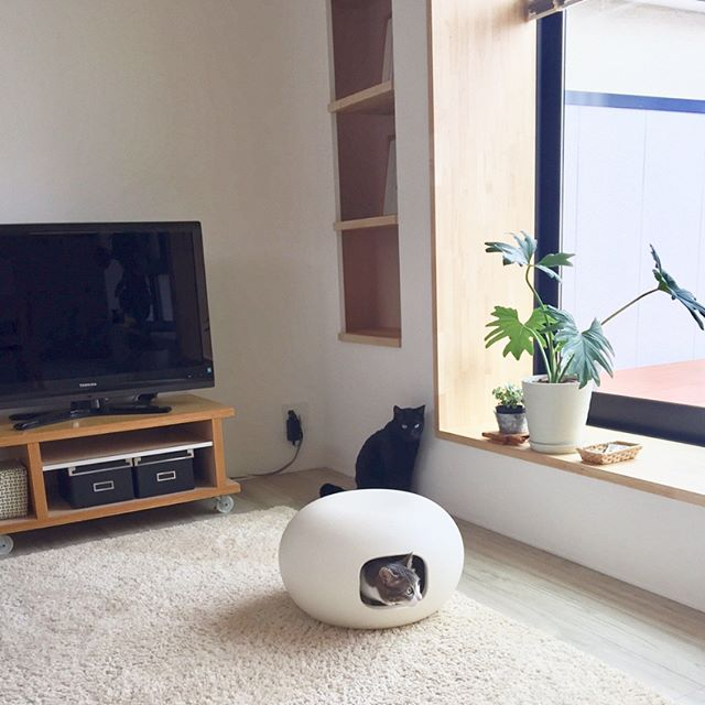 インテリアにもなる素敵な『猫かまくら』