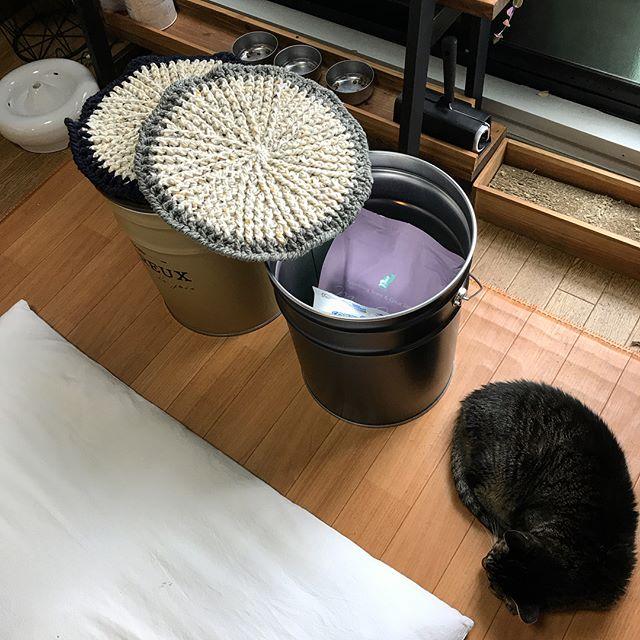 愛猫のフードもおしゃれに収納