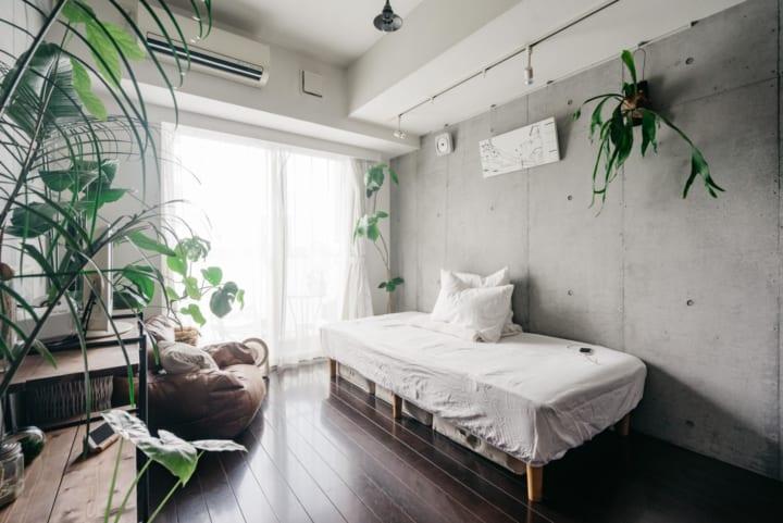 脚のあるベッドと観葉植物