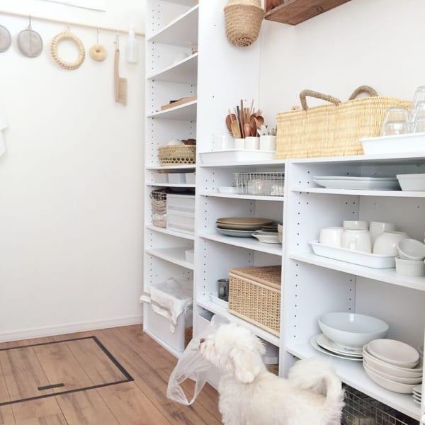 キッチン 収納 ニトリ5
