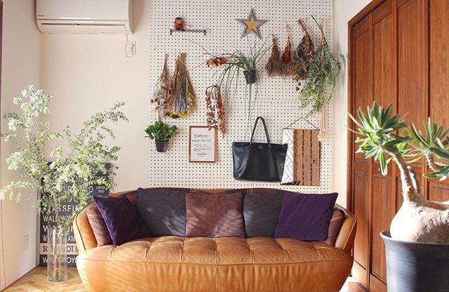 観葉植物 飾り方2