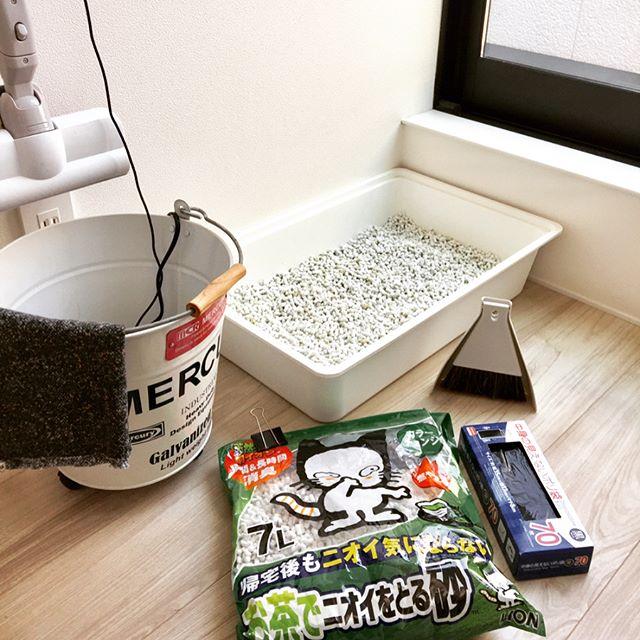 【無印】卓上ほうきでペットのトイレ掃除