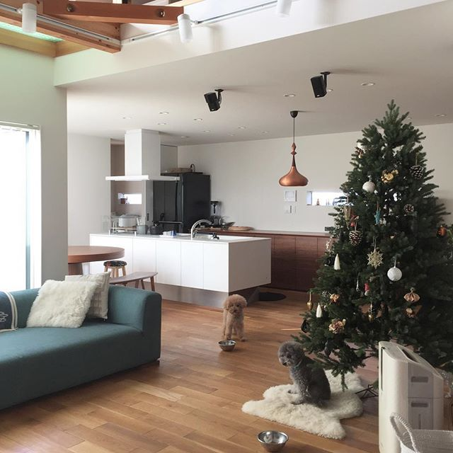 クリスマスツリーとアレンジメント