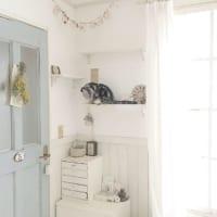 猫のいるおしゃれなインテリア実例集♪ペットと快適に暮らす部屋作りをご紹介!