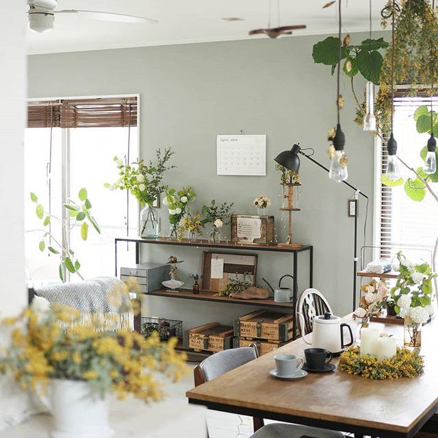 植物が似合う淡い灰色壁紙を使ったリビング