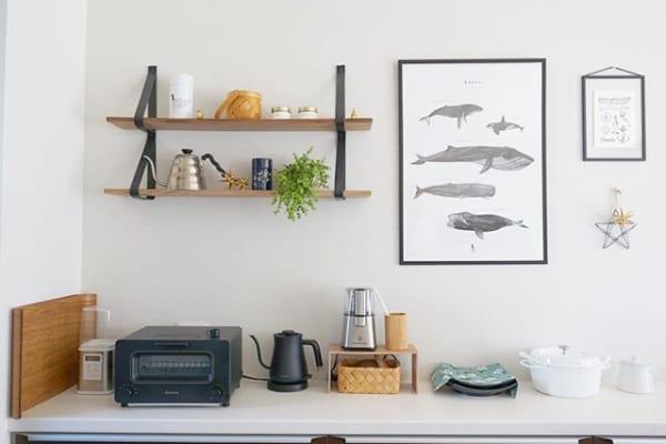 図鑑からでてきたようなクジラのポスター