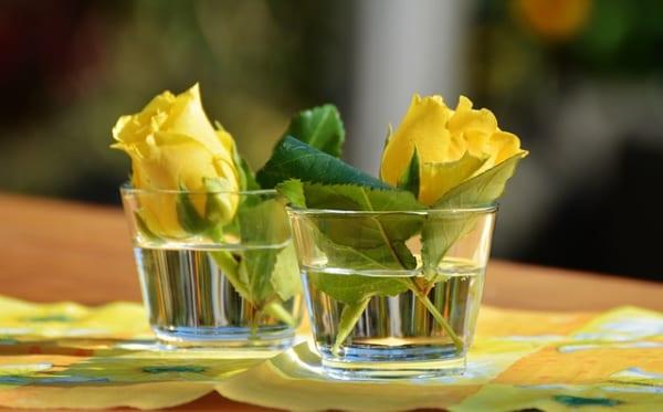 黄色いお花 インテリア風水9