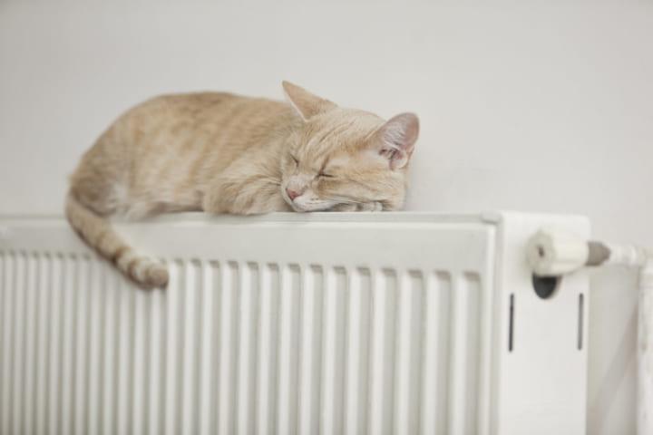 一人暮らし おすすめ 暖房器具