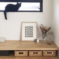 ネコとの暮らしを楽しむ!ネコが快適に過ごせる住まいの工夫やアイテムをご紹介♪