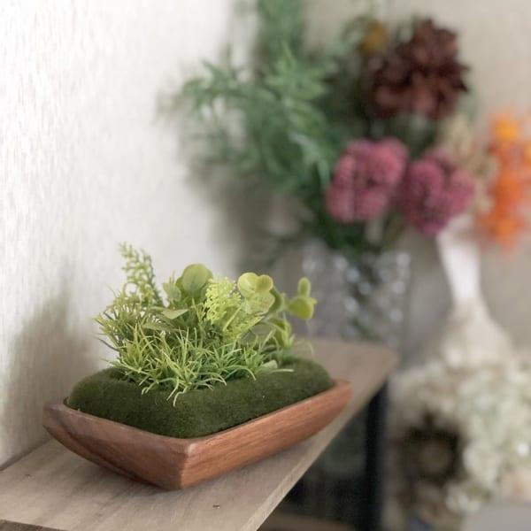 【キャンドゥ】×【セリア】可愛いミニ盆栽