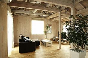 構造用合板の壁=手を入れる「余白」壁にはボルダリングを設置。3