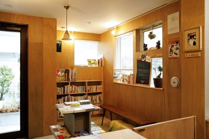 猫と本屋が互いに助け合う。保護猫がお客さまを迎える空間2