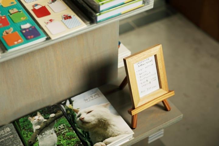 猫と本屋が互いに助け合う。保護猫がお客さまを迎える空間3