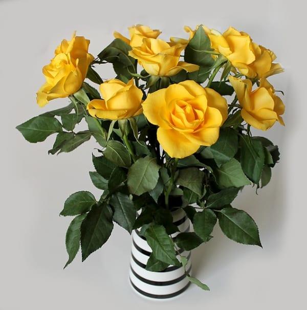 黄色いお花 インテリア風水11