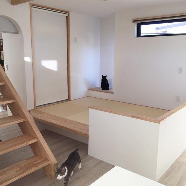 ワンスペースの畳で和モダンな空間