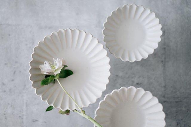 中坊優香さんの白い器