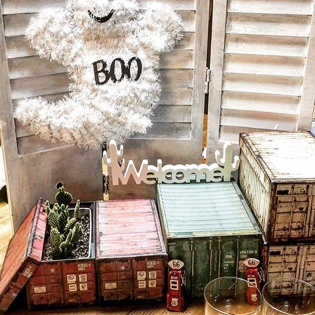 室内装飾にもなるおすすめの100均商品