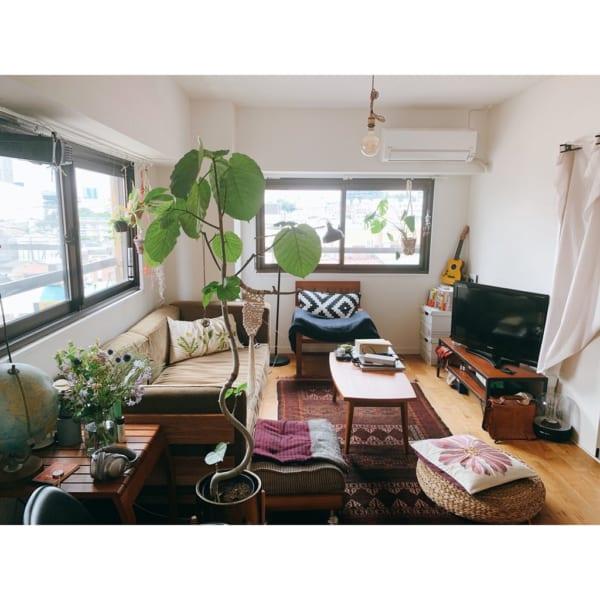 グリーンがさわやかな二人暮らしの部屋