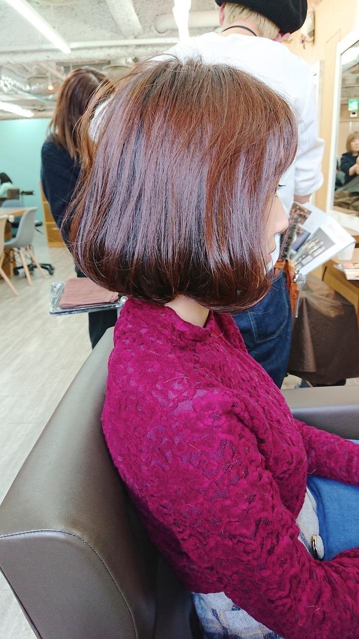 イエベ秋さんに似合う髪色《コーラル》2