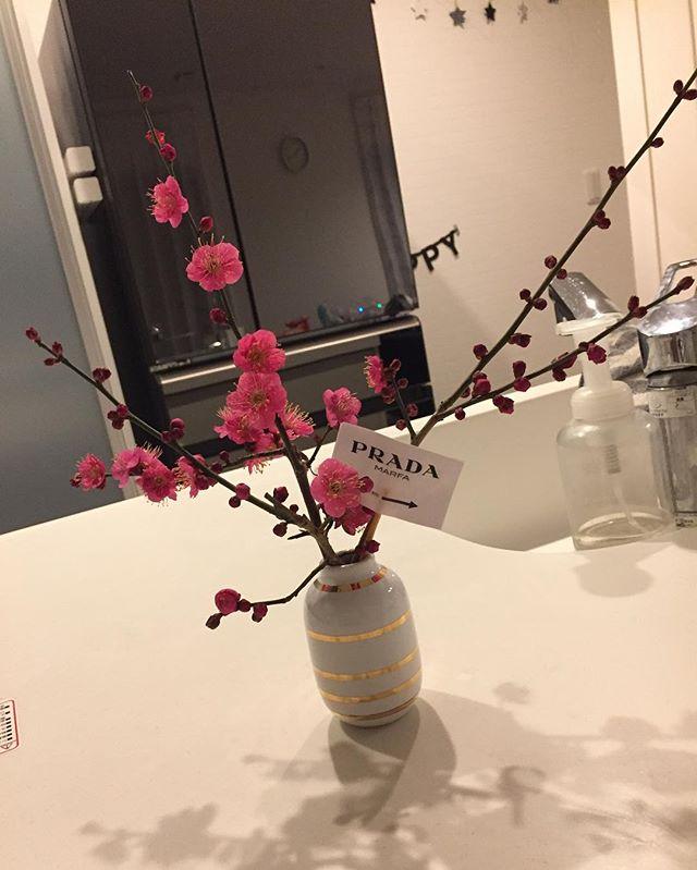 花 インテリア2