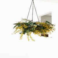 春に飾りたい季節のお花♪おすすめの花とおしゃれな飾り方で春を先取りしよう!