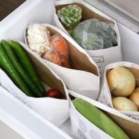 もうこれで食品を無駄にしない!参考になる冷蔵庫の中の収納アイディア