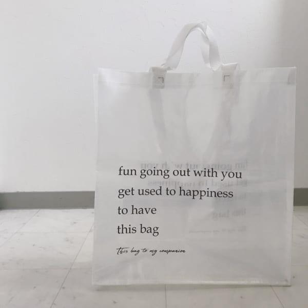 100均のクリアバッグで便利&クールに収納