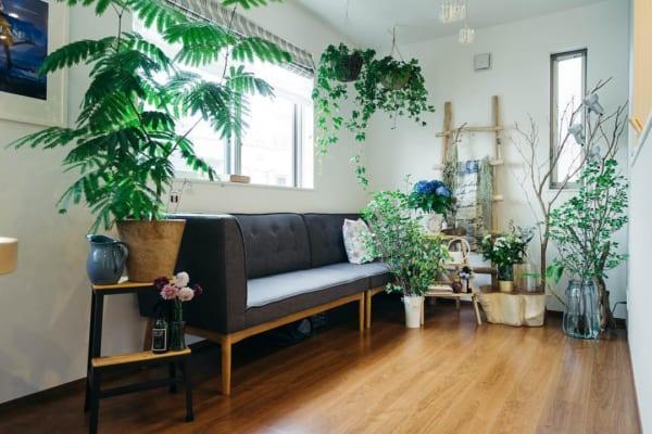 狭いリビングのソファのレイアウト10