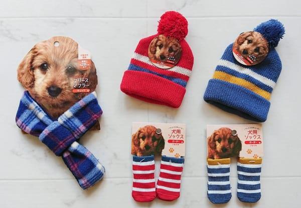 犬用ソックス(キャンドゥ)