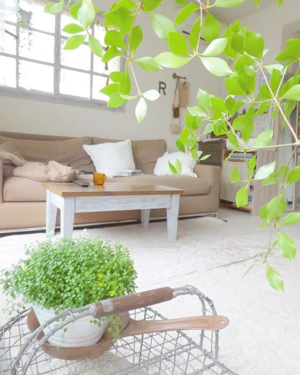 狭い部屋にソファを置くコツ《リビング》10