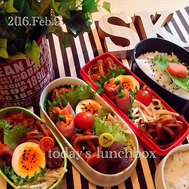 いんげんの人気レシピ☆簡単な副菜料理《お弁当》2