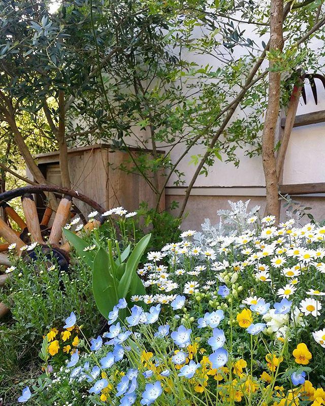 春の花を取り入れたガーデニング実例2