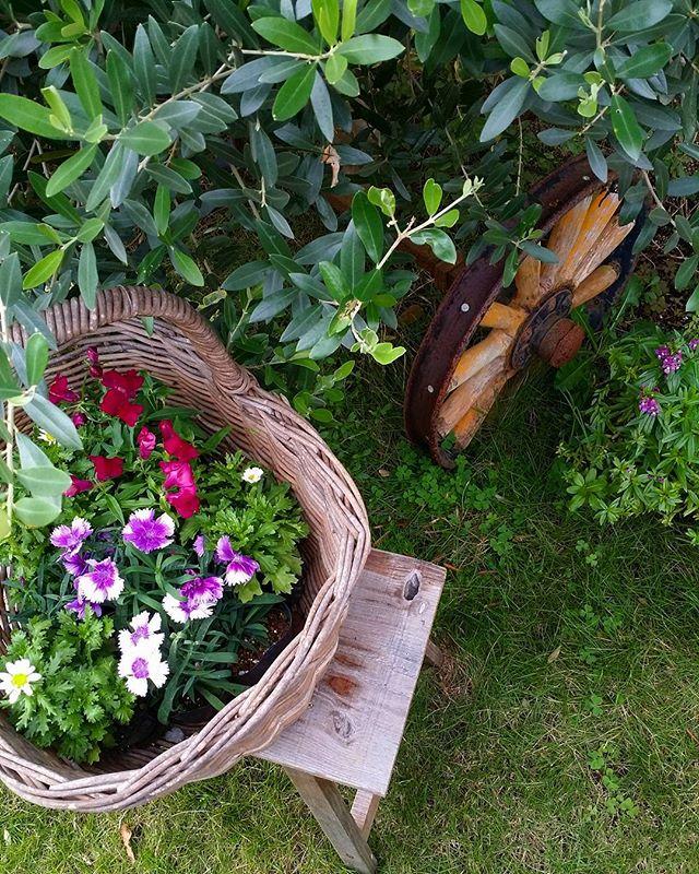 春の花を取り入れたガーデニング実例4