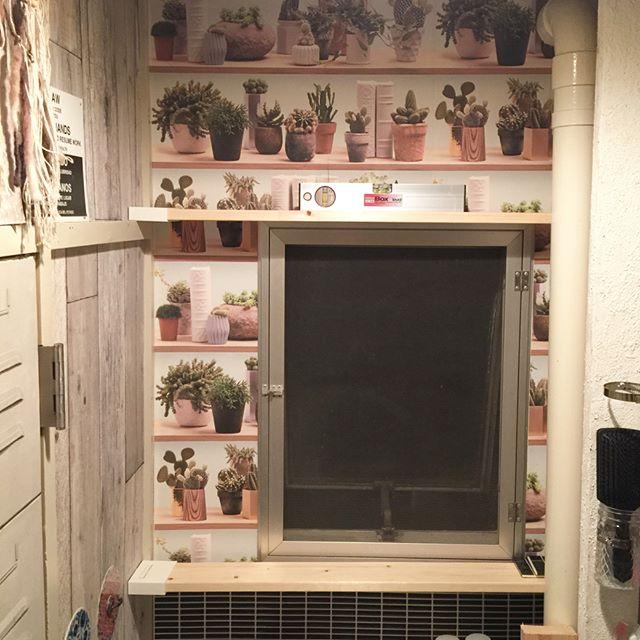 シンク回りの整理に役立つ壁面収納