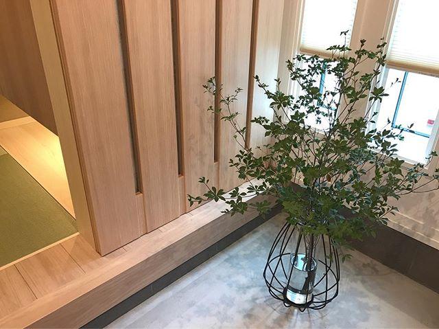 生活空間になじむ花やグリーンの飾り方a