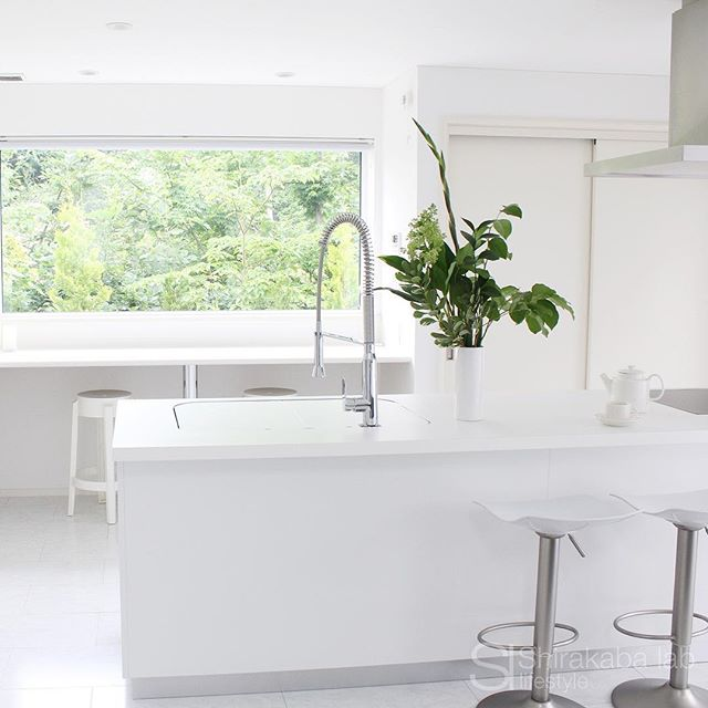 白い空間に屋外と室内の緑が効いたインテリア