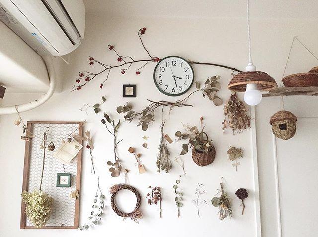壁一面に草花を飾るインテリアコーディネート