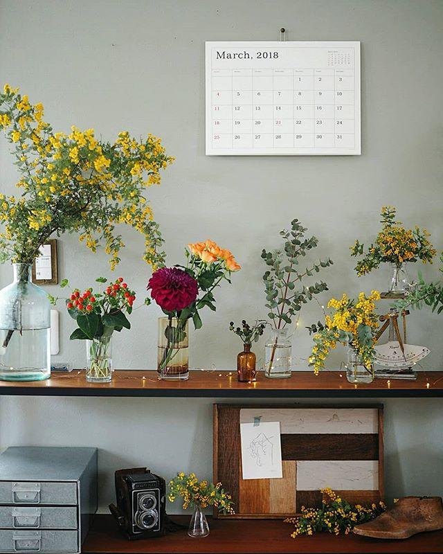 棚上に春の植物を並べる素敵なレイアウト