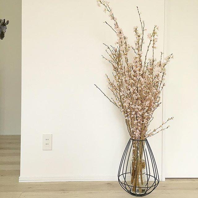 春の花「桜」を活かしたお部屋