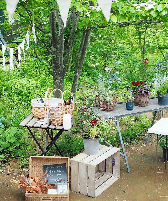 花と木が豊かな庭で休日が特別な時間になる