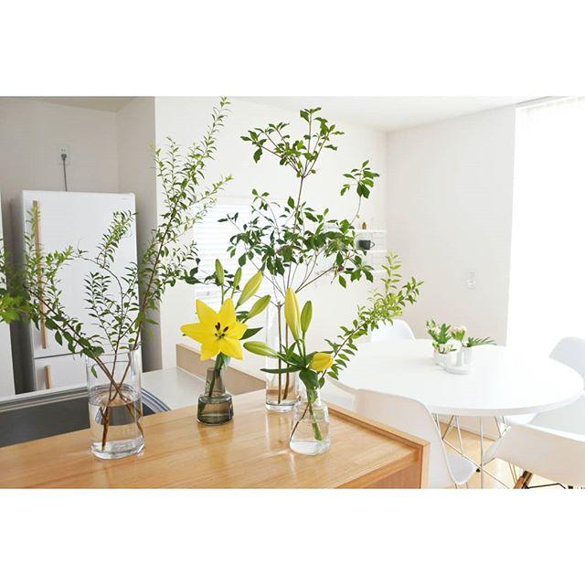 光が豊かで明るい部屋に生け花を添えて