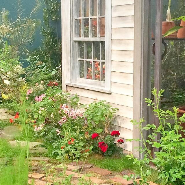 様々な種類の花が育つ庭