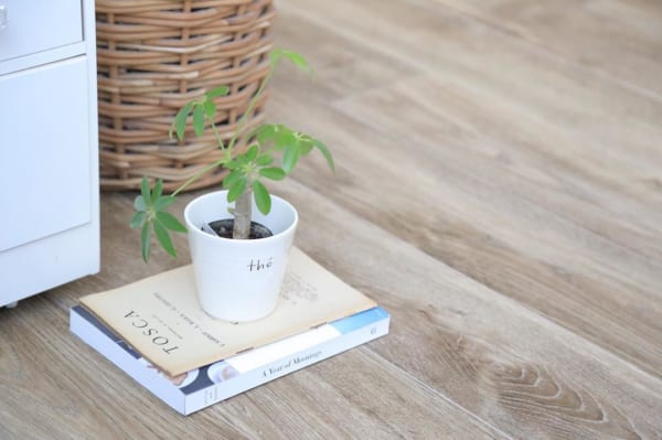 植物と園芸アイテム4