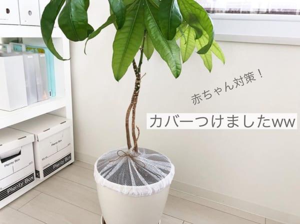 鉢植えカバーを作ろう。